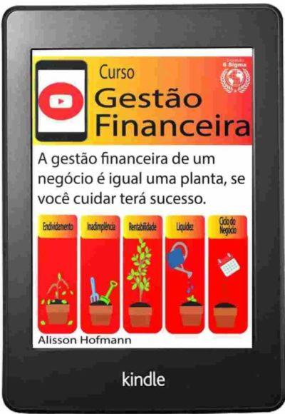 Curso gestão financieira